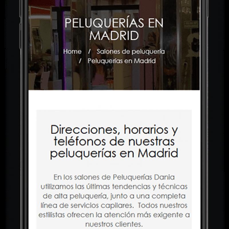 Desarrollo web para Dania Peluquerias